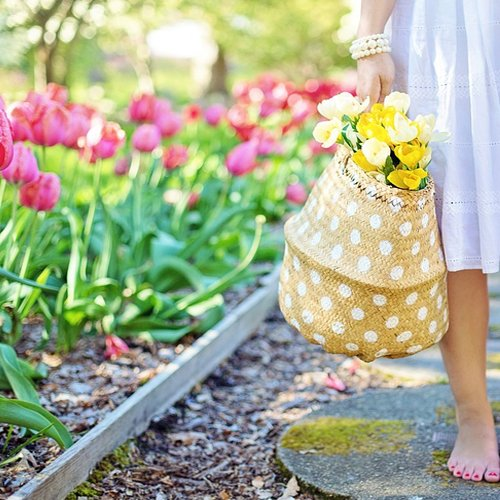 Dr_Della_Parker_Feel Your Best Just In Time For Spring