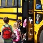 3 Naturopathic Tips for Moms: Back to School Immune Boost for Kids