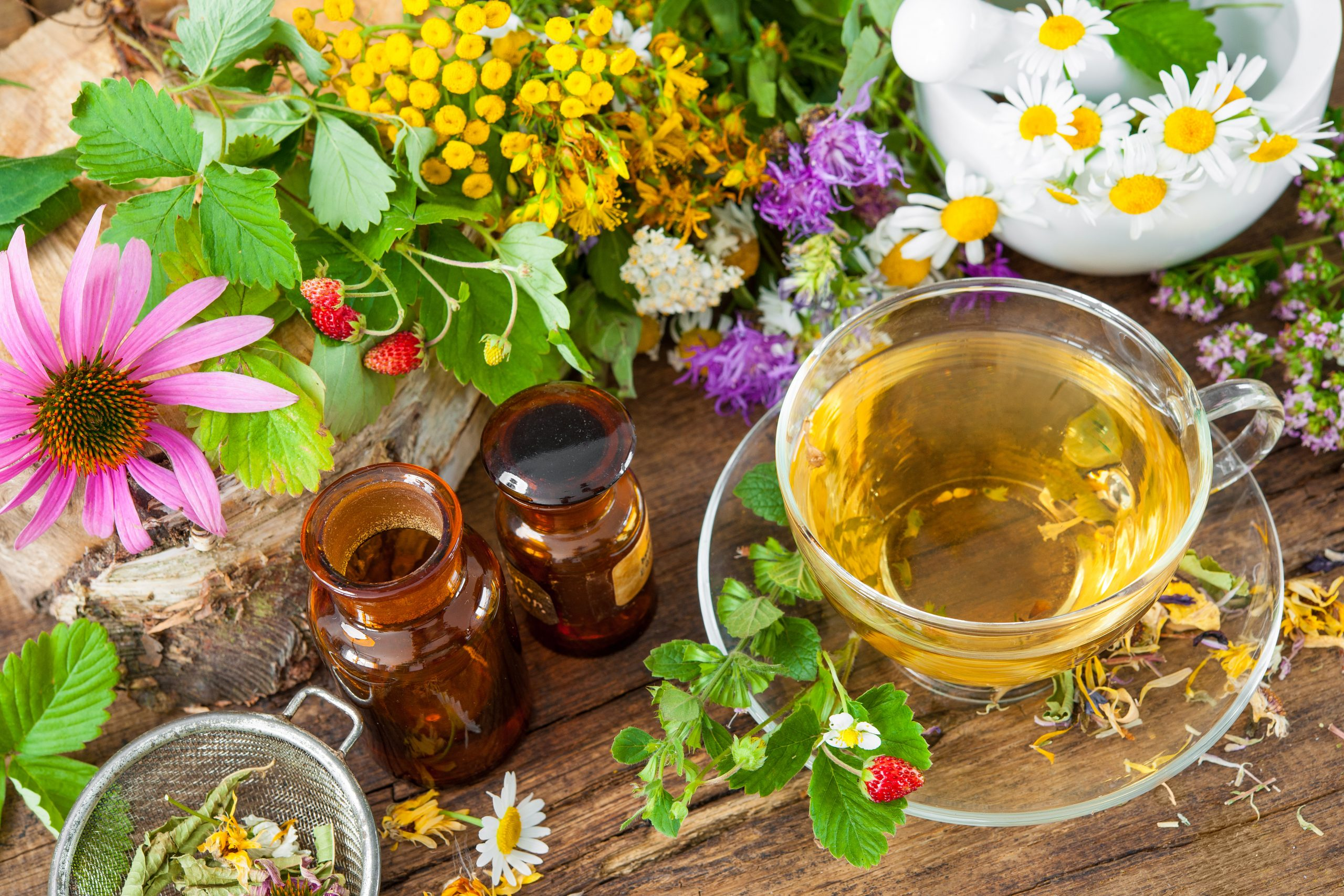 Stellar H&W provides services as a naturopathic doctor